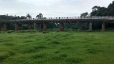 Koilery bridge